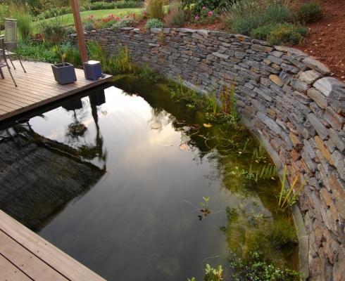 Gestaltung gartenteichanlage mit holzterrasse cr mer for Gartenteichanlagen bilder