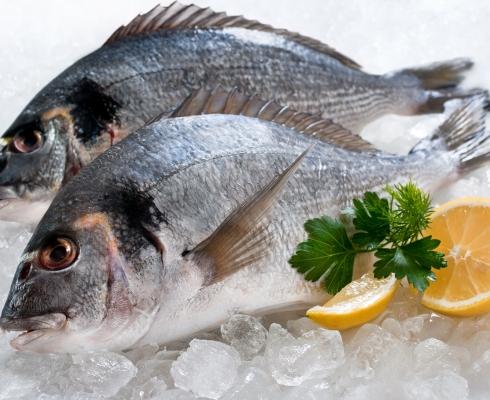 Frisch fisch fisch zegel burtscheid stilpunkte for Fisch essen aachen