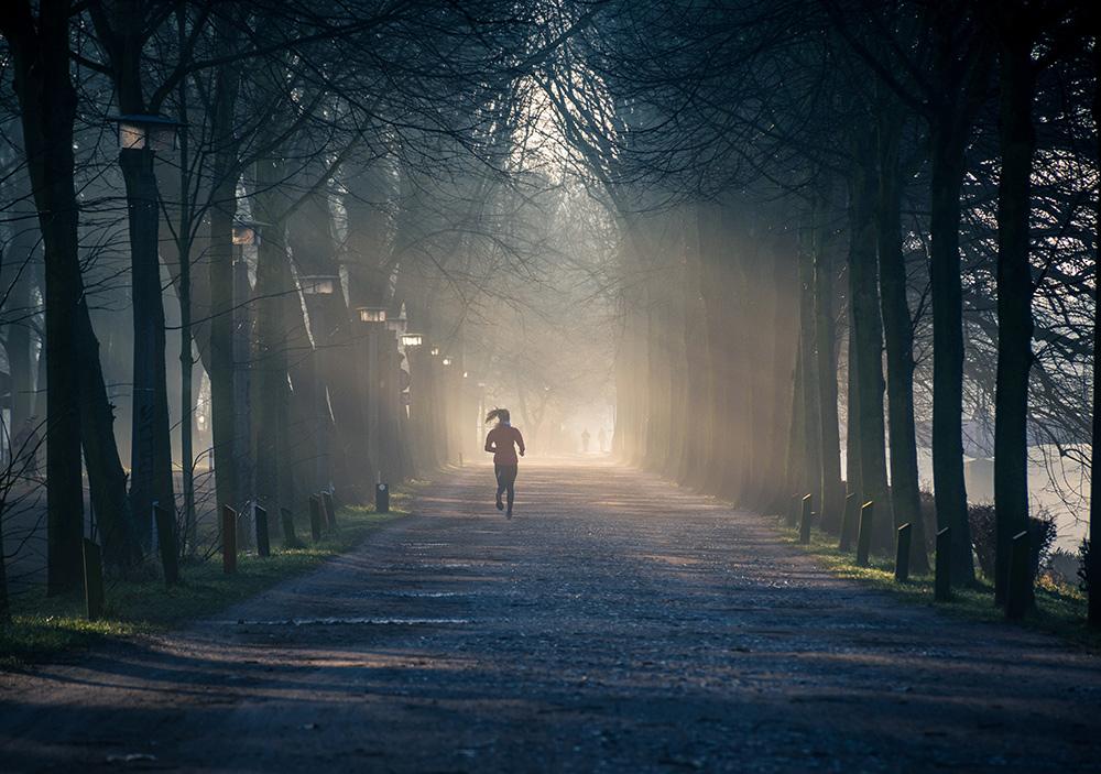 STILPUNKTE-Blog: Laufen in der Natur reduziert Stress und macht den Kopf frei.
