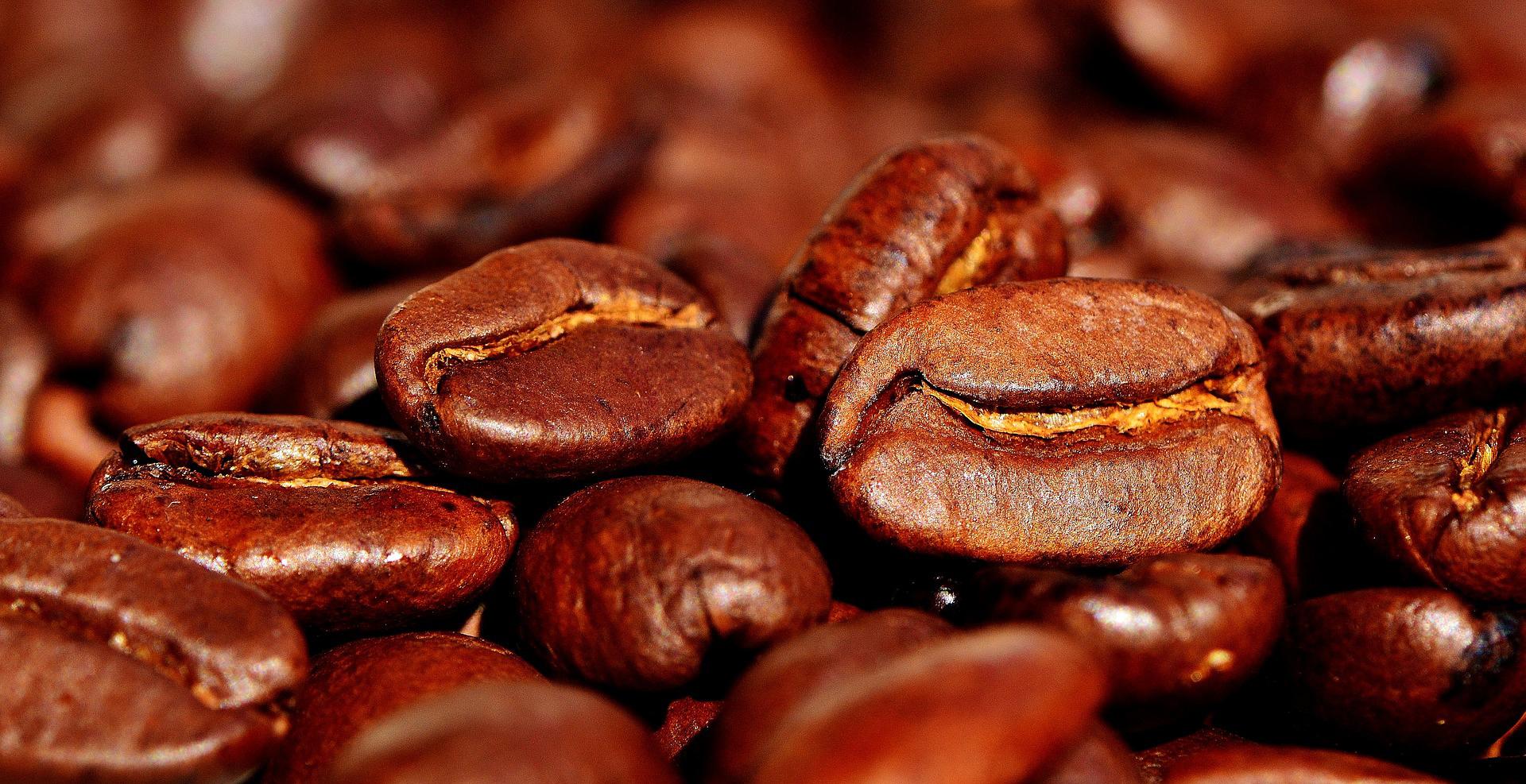 Stilpunkte-Blog: Frisch geröstete Kaffeebohnen, fertig zur Verarbeitung in Kaffeemühle, Kaffeevollautomat und Kaffeemaschine