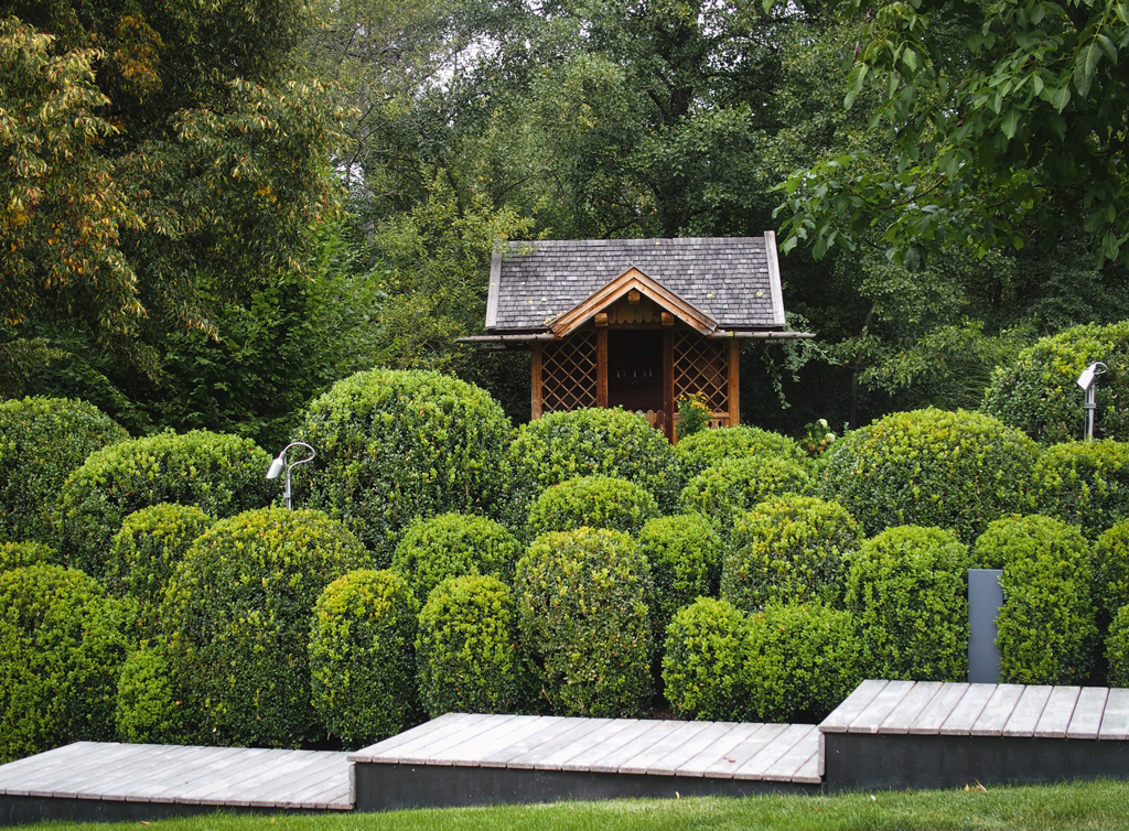 Stilpunkte-Blog: Modernes Gartendesign mit Buchsbäumen und Stufen mit Teakholzbeplankung, Foto: Jensen Landschaftsarchitekten